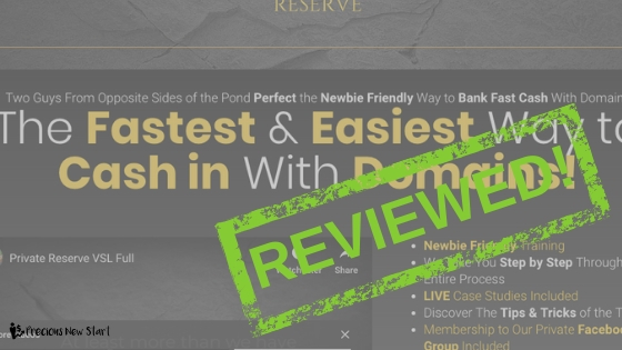make money by flipping domains private reserve review