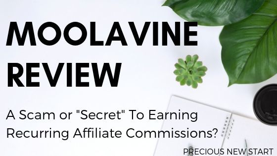 is moolavine a scam blog