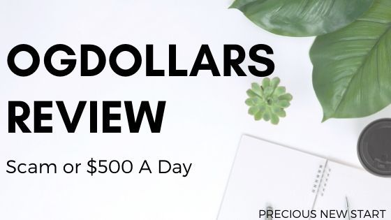 OGDollars review - is OGDollars a scam or legit $500 a day